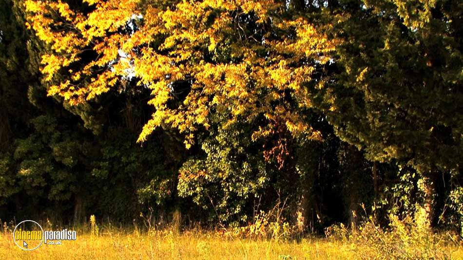 Four Seasons: Adorable Autumn online DVD rental