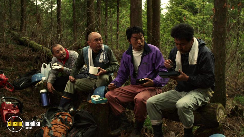 The Woodsman and the Rain (aka Kitsutsuki to ame) online DVD rental
