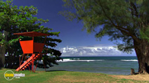 Still #8 from HD Window: Hawaii