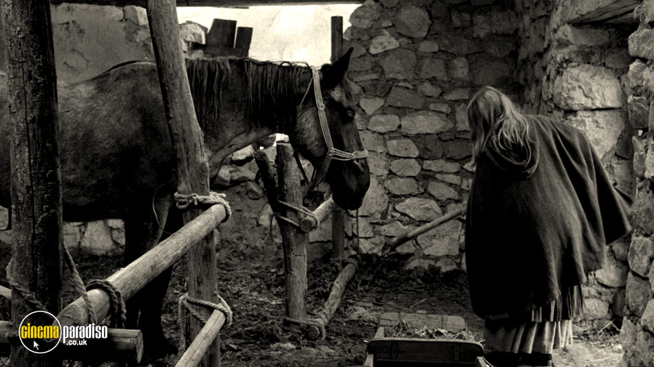 The Turin Horse (aka A Torinói ló) online DVD rental