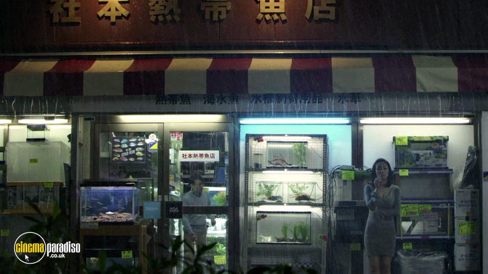 Cold Fish (aka Tsumetai nettaigyo) online DVD rental