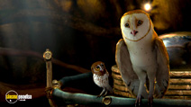 Still #3 from Legend of the Guardians: The Owls of Ga'Hoole