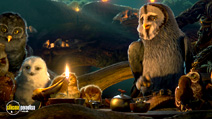 Still #6 from Legend of the Guardians: The Owls of Ga'Hoole