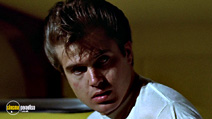 A still #18 from American Graffiti with Beau Gentry