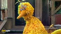 Still #1 from I Am Big Bird: The Caroll Spinney Story