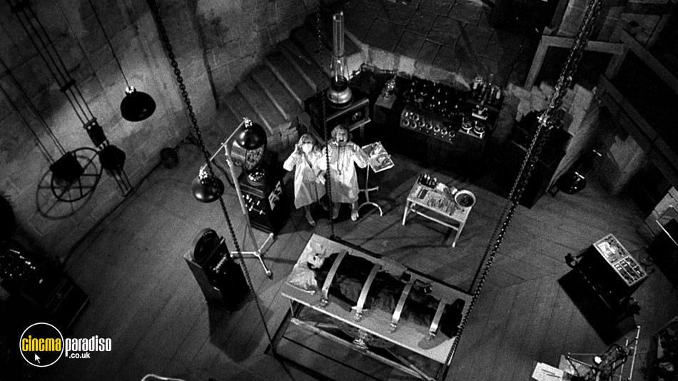 Young Frankenstein online DVD rental