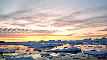 Still #2 from Antarctica: An Adventure of a Different Nature