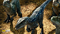 A still #55 from Jurassic World