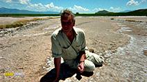 Still #6 from David Attenborough: Trials of Life