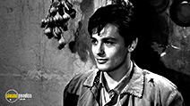 A still #2 from Rocco and His Brothers (1960) with Alain Delon