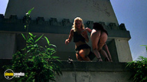 A still #3 from Cannibal Women in the Avocado Jungle of Death with Shannon Tweed