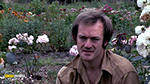 A still #6 from Penda's Fen (1974) with Ian Hogg