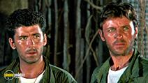 A still #8 from Zombie Flesheaters 2 (1988) with Deran Sarafian