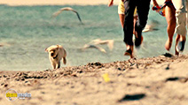 A still #7 from Marley and Me 2: The Puppy Years (2011)