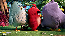 A still #33 from The Angry Birds Movie (2016)