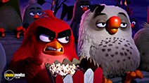 A still #32 from The Angry Birds Movie (2016)