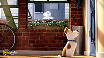 A still #2 from The Secret Life of Pets (2016)