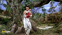 A still #1 from Five Element Ninjas (1982)