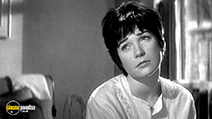 A still #6 from Two for the Seesaw (1962)