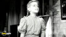 A still #32 from The Fabulous Dorseys (1947)