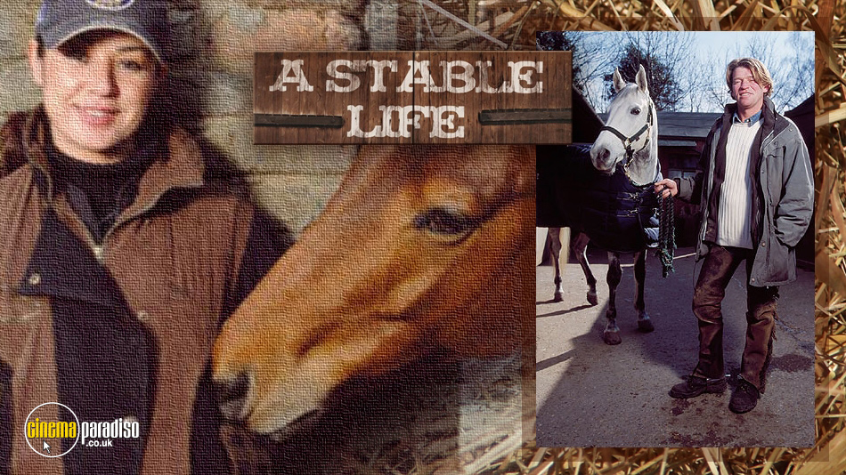 A Stable Life online DVD rental